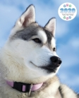 2020 Siberian Husky Dog Planner - Weekly - Daily - Monthly Cover Image