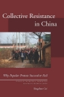 Collective Resistance in China: Why Popular Protests Succeed or Fail (Studies of the Walter H. Shorenstein Asia-Pacific Research Center) Cover Image