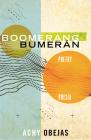 Boomerang / Bumerán: Poetry / Poesía Cover Image