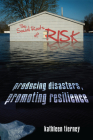 The Social Roots of Risk: Producing Disasters, Promoting Resilience (High Reliability and Crisis Management) Cover Image