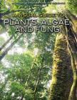 A Visual Guide to Plants, Algae, and Fungi (Visual Exploration of Science) Cover Image