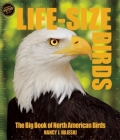 Life Size Birds: The Big Book of North American Birds Cover Image