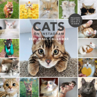 Cats on Instagram 2021 Wall Calendar: (Monthly Calendar of Adorable Internet Kitties, Photos of Cute and Funny Cats in 12-Month Calendar) Cover Image