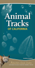 Animal Tracks of California: Your Way to Easily Identify Animal Tracks (Adventure Quick Guides) Cover Image