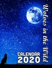 Wolves in the Wild Calendar 2020: 14 Month Desk Calendar for People Fascinated with Wolves and Pack Animals Cover Image
