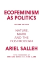 Ecofeminism as Politics: Nature, Marx, and the Postmodern Cover Image