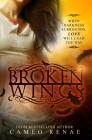 Broken Wings (Hidden Wings #2) Cover Image