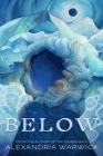 Below Cover Image