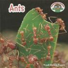 Ants (Backyard Safari) Cover Image