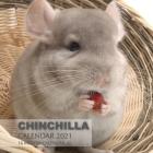 Chinchilla Calendar 2021: 16 Month Calendar Cover Image