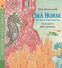 Sea Horse: Read and Wonder: The Shyest Fish in the Sea Cover Image