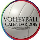 Volleyball Calendar 2015: 16 Month Calendar Cover Image