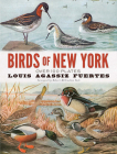 Birds of New York: Over 100 Plates Cover Image