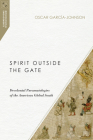 Spirit Outside the Gate: Decolonial Pneumatologies of the American Global South (Missiological Engagements) Cover Image