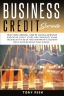 Business Credit Secrets: Save Your Company. How to Check and Repair a Negative Credit for Corporate Loans. Strategies To Solve Your Company's L Cover Image