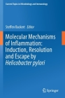 Molecular Mechanisms of Inflammation: Induction, Resolution and Escape by Helicobacter Pylori (Current Topics in Microbiology and Immmunology #421) Cover Image