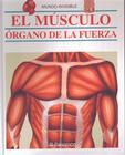 El Musculo: Organo de la Fuerza Cover Image
