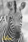 Zebra: Animal, Nature, Notebook, Journal, Diary (110 Pages, Blank, 6 x 9) Cover Image