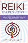 Reiki for Beginners: The Newest Guide to Heal Your Mind and Your Emotions. Improve your spiritual life Through the Ancient Meditations Tech Cover Image
