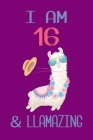 I am 16 and Llamazing: Llama Sketchbook for for 16 Year Old Girls Cover Image
