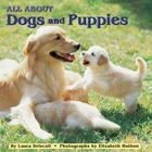 All about Dogs and Puppies (All Aboard 8x8s) Cover Image