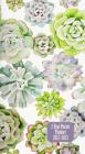 2022-23 Succulent Garden 2-Year Pocket Planner (24-Month Calendar) Cover Image