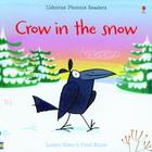 Crow in the Snow Cover Image