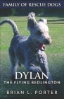 Dylan: The Flying Bedlington Cover Image