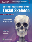 Surgical Approaches to the Facial Skeleton Cover Image