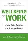 Wellbeing at Work Cover Image
