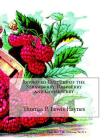 Improved Culture of the Strawberry, Raspberry and Gooseberry Cover Image