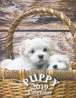 Puppy 2019 Calendar Cover Image