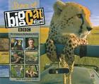 Stars of Big Cat Diary Cover Image