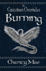The Custodian Chronicles Burning Cover Image