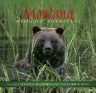 Montana Wildlife Portfolio Cover Image