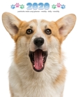 2020 Pembroke Welsh Corgi Planner - Weekly - Daily - Monthly Cover Image
