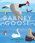 Barney Goose: A Wild Atlantic Way Adventure Cover Image