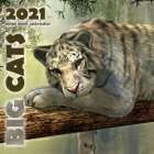 Big Cats 2021 Mini Wall Calendar Cover Image