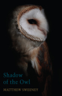 Shadow of the Owl Cover Image