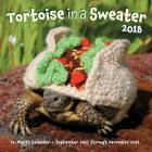 Tortoise in a Sweater 2018: 16-Month Calendar September 2017 through December 2018 Cover Image