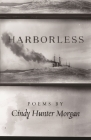 Harborless (Made in Michigan Writers) Cover Image