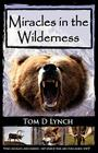 Miracles in the Wilderness: Action Packed Adventure, High Speed Crashes, Alaska/Canada Wolf, Grizzly, Moose Attacks. Cover Image