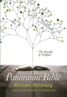 The Panoramic Bible: The Storyline of Scripture Cover Image