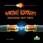 Everyday Electricity, Shocking But True Cover Image