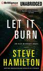 Let It Burn (Alex McKnight #7) Cover Image