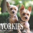 Yorkies: 2021 Mini Wall Calendar Cover Image