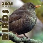 Birds 2021 Mini Wall Calendar Cover Image