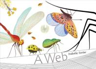 A Web Cover Image