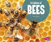 A Colony of Bees (Animal Groups) Cover Image