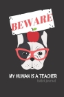 BEWARE My Human is a Teacher: Bullet journal for teachers who are dog lovers (pug) Cover Image
